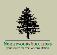 Logo design for Northwoods Solutions